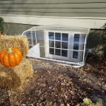 pumpkins-window-cover